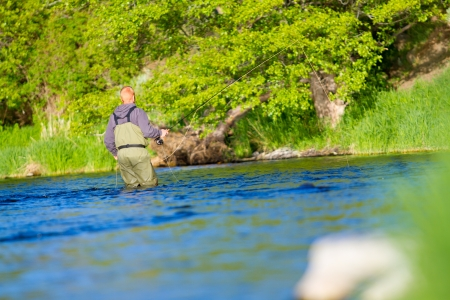 An experienced fly fisherman wades in the water while fly fishing the Deschutes River in Oregon. photo