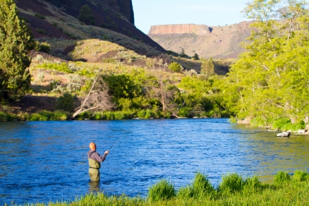 fly fishing: An experienced fly fisherman wades in the water while fly fishing the Deschutes River in Oregon.