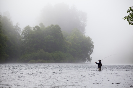 A fly fisher stands in the water and casts a line out while trying to catch steelhead in the pacific northwest. This fly fisherman has a great cast and is very experienced, standing in a foggy scene on the river.