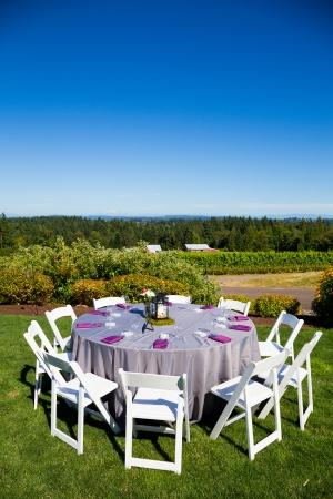 테이블,의 자, 장식 및 장식 오 레 곤에서 야외 장소 포도원 와이너리에서 결혼식 피로연에서. 스톡 콘텐츠
