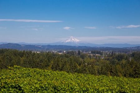 A scenic shot of mount hood from afar with Portland in the valley. photo