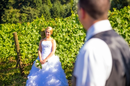 A shallow depth of field is used on this shallow focus layered shot of a bride and groom on their wedding day at a vineyard winery in Portland Oregon. Imagens