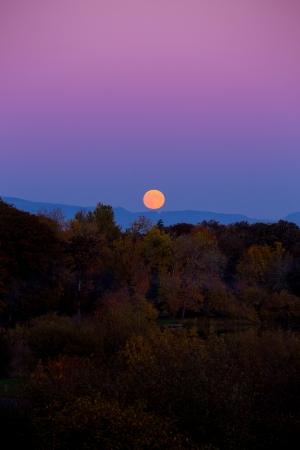 ショアブレイク秋この中秋の名月上昇で秋の葉色と木は色を示し、風景と一緒に空を遠くから撮影します。