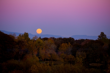 Suring autumn this harvest moon rise over fall leaves color and trees is photographed from far away to show the color and sky along with the landscape.