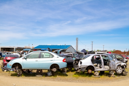 The scene shows many cars and other automobiles in a salvage junk yard where customers can pick and choose part for their vehicle repairs. Stockfoto