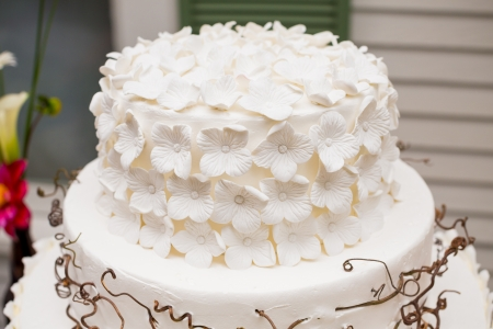 A beautiful wedding cake is set up at the reception for a bride and groom. photo