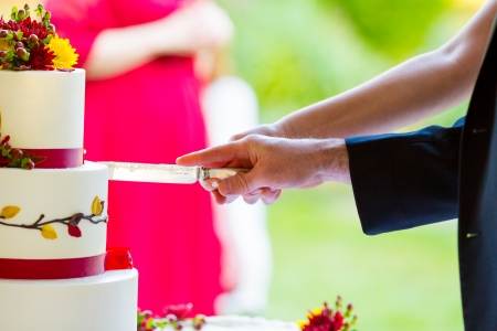 A bride and groom cut the cake together at their wedding reception. Stock Photo