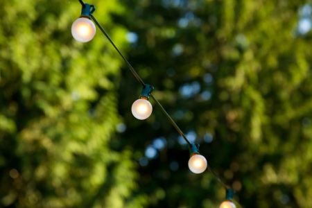 White lights are hung up at this wedding reception outdoors with trees out of focus in the background.