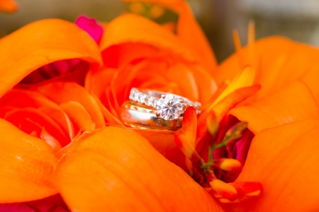 Wedding rings of the bride and groom are placed on flowers for a closeup color image.