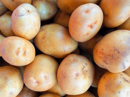 gold  yellow: Yukon Gold Yellow Potatoes Stock Photo