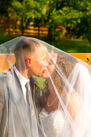 smooching: Bridal veil covers the bride and groom on their wedding day while they share a special moment together for a portrait of their love. Stock Photo
