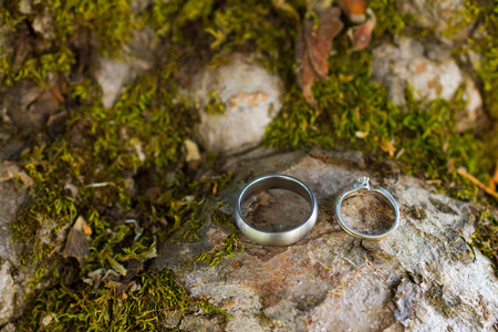Two wedding rings together at a winery in Oregon, the rings are placed on a rock with green moss.