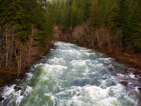 The North Middle Fork of the Willamette River flows through the forest in Oregon and this image is a nature landscape showing the winter flows.