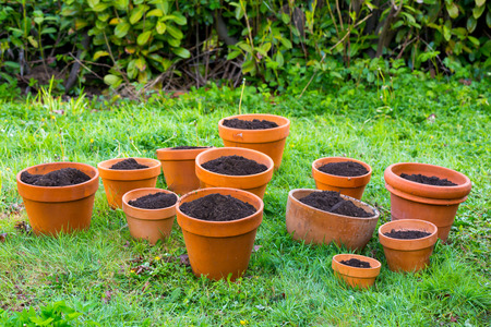 terra cotta: Fresh soil in terra cotta pots for a potted plant organic garden.