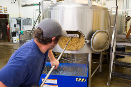 quantities: Eugene, OR, USA - July 17, 2014: Brewer at Oakshire Brewing making large quantities of Watershed IPA, a staple beer for this craft brewery.