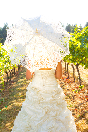 Parasol held by the bride on her wedding day in a vineyard. 版權商用圖片