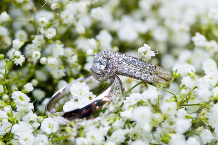 anillos boda: Wedding rings for the bride and groom on flowers at a ceremony and reception.