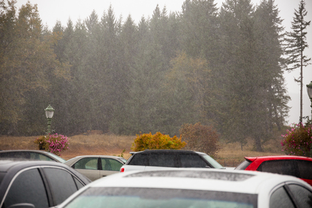 precipitation: Rain comes down hard in this storm in Oregon, typical weather in the Fall or Autumn.