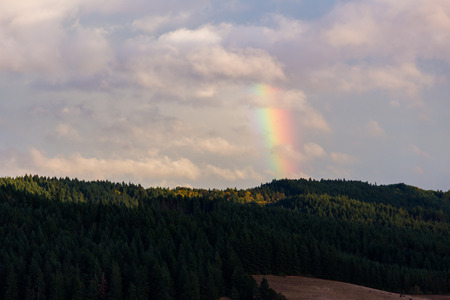 eugene: Rainbow in the sky above some typical hills near Eugene Oregon after a large storm.