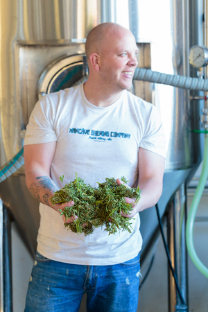 eugene: EUGENE, OR - NOVEMBER 4, 2015: Head brewmaster Brandon Woodruff holds some marijuana leaves used for brewing a hemp seed beer at the startup craft brewery Mancave Brewing. Editorial