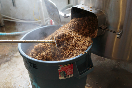 spent: EUGENE, OR - NOVEMBER 4, 2015: Used mash is emptied from the mashing machine into a large bucket for recycling at the startup craft brewery Mancave Brewing. Editorial