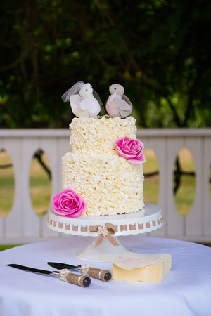 tarta de boda: White wedding cake at a reception before the bride and groom cut the cake for guests.