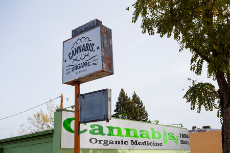 building business: SPRINGFIELD, OR - NOVEMBER 12, 2015: Cannabis LLC Organic Medicine is a new medical marijuana dispensary in Springfield Oregon. Editorial