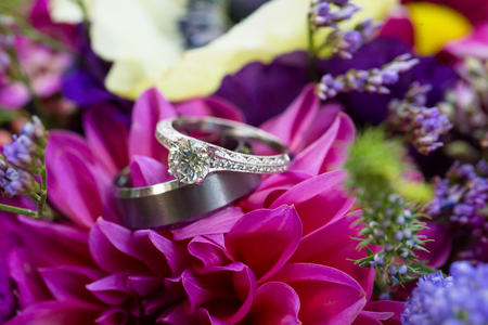 c�r�monie mariage: Flowers make the backdrop for the bride and groom wedding rings at a ceremony in Oregon. Banque d'images