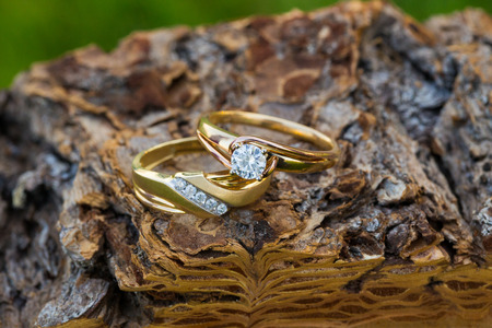 vows: Gold wedding rings for the bride and groom set on an interesting piece of wood for a closeup picture of the jewelry.