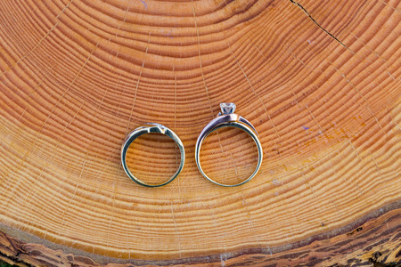 Gold wedding rings for the bride and groom set on an interesting piece of wood for a closeup picture of the jewelry.