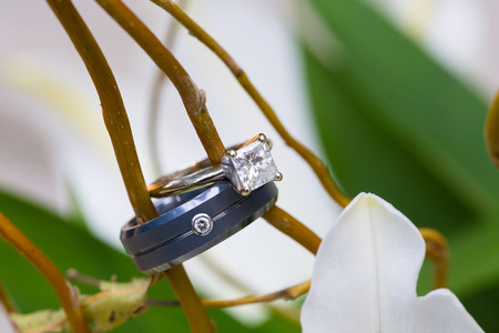 Wedding rings of the bride and groom photographed with a closeup lens at a reception.