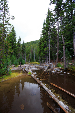 oregon cascades: Devils Lake is a very popular hiking and backpacking destination for Central Oregon hikers wanting to explore the wilderness. Stock Photo