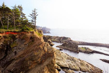 ショア エイカーズ州立公園、オレゴン州の海岸に沿って岩の崖。