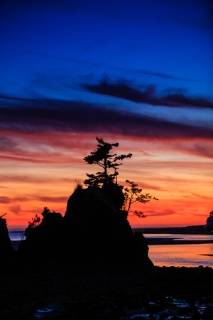 resilient: Amazingly beautiful sunset at Siletz Bay with a resilient lone tree on top of a rock overlooking the beach at dusk.