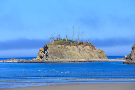 oregon coast: Sunset Bay state park located on the Oregon Coast near Coos Bay. Stock Photo