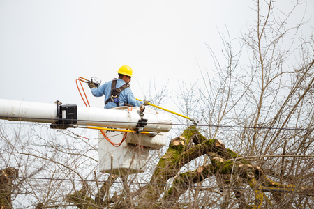 tree line: SPRINGFIELD, OR - FEBRUARY 16, 2016: Utility worker trimming a tree for power line access in Springfield Oregon.