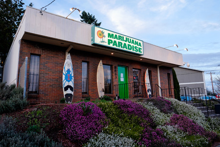 PORTLAND, OR - FEBRUARY 27, 2016: Marijuana Paradise is a pot dispensary in Portland Oregon, part of a string of retail drug stores that have popped up as a result of the state of Oregon passing a law legalizing the use of marijuana.