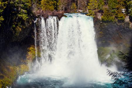 plunge: Koosah Falls is a 70-foot plunge waterfall on the McKenzie River in Oregon.