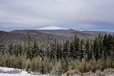 willamette: Diamond Peak rises above the trees in the Willamette National Forest of Oregon. Stock Photo
