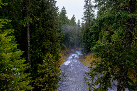 willamette: Upper McKenzie River in the Willamette National Forest of Oregon, a historicly famed fly fishing travel destination. Stock Photo