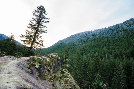 Large rock outcropping overlooking a 200 foot drop amidst the Willamette National Forest in Oregon. Stock Photo