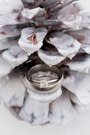 White pinecone holding wedding rings of the bride and groom at a winter wedding in Bend Oregon. Imagens