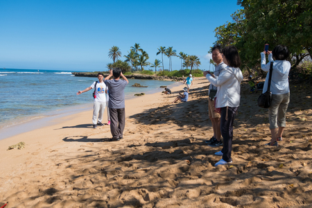 HALEIWA, OAHU, HAWAII - FEBRUARY 15, 2017: Tourists fill the beach and take pictures and selfies with cameraphones after a tour bus lets them off at Haleiwa Beach Park in Oahu Hawaii. Editorial