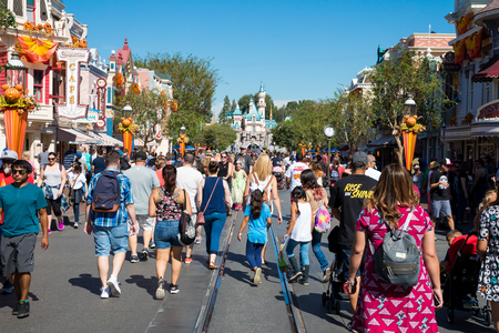 Crowded Disneyland Theme Park