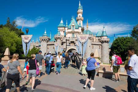 Disneyland Theme Park Castle