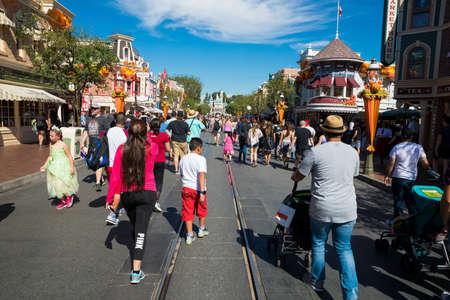 Crowded Disneyland Theme Park