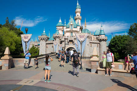 Disneyland Theme Park Castle