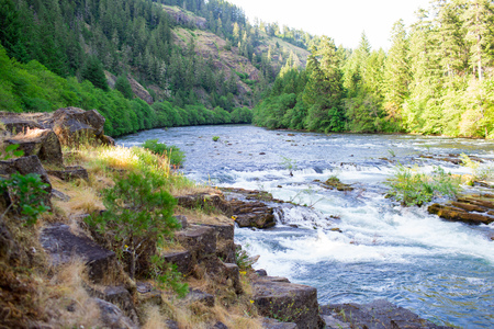 North Umpqua River near Glide and Steamboat Oregon in National Forest Land protected and preserved for future generations.