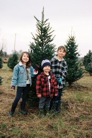 Christmas Tree Farm Film Scans with Oregon Kid Imagens