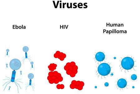 virus sida: Virus Vectores